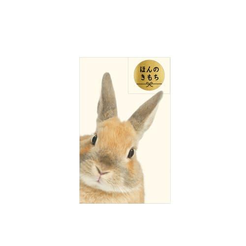 【ポチ袋】ポチ袋S ひょっこりウサギ