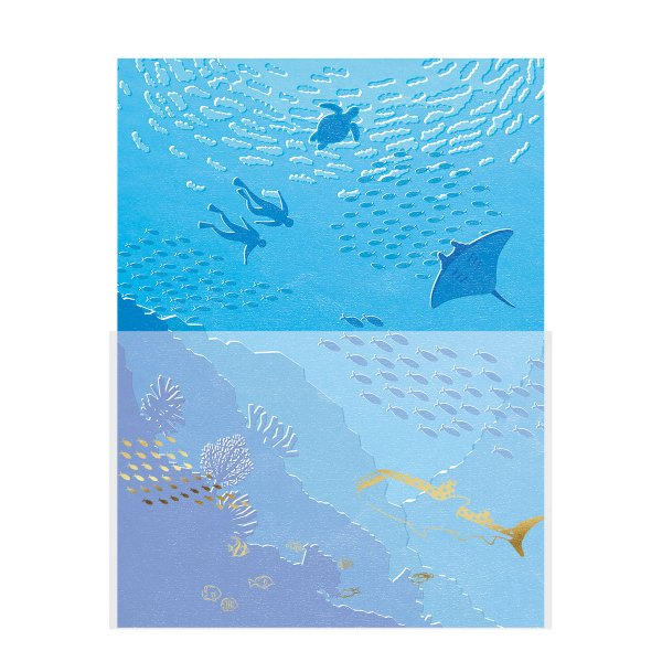 レター<br /> 海と魚たち